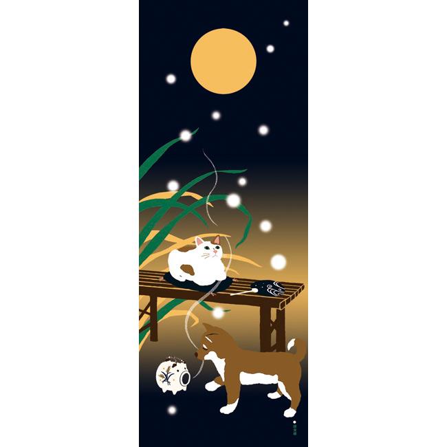 猫と豆柴の夏のある夜